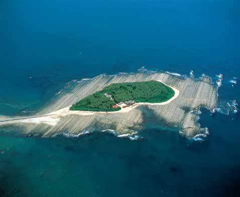 【半日観光】日南海岸神話の旅 青島&鵜戸神宮コース(4時間)
